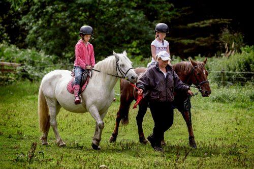 Munnar Tent Camps,Horse Riding (1)